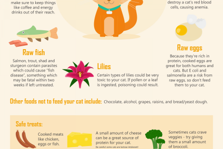 What Not to Feed Your Pets Infographic
