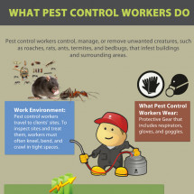 what pest control workers do Infographic