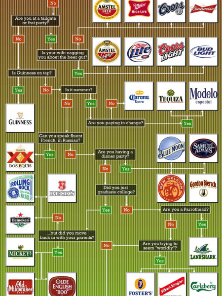 What Should I Drink- Beer Addition Infographic