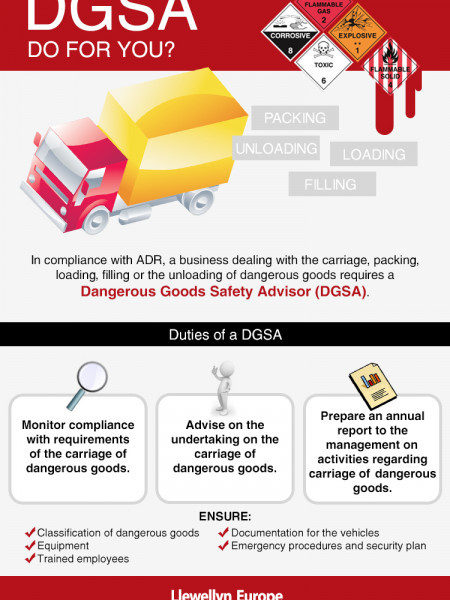 What Should Your DGSA Do For You? Infographic