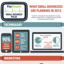 What Small Businesses are Planning in 2013 Infographic