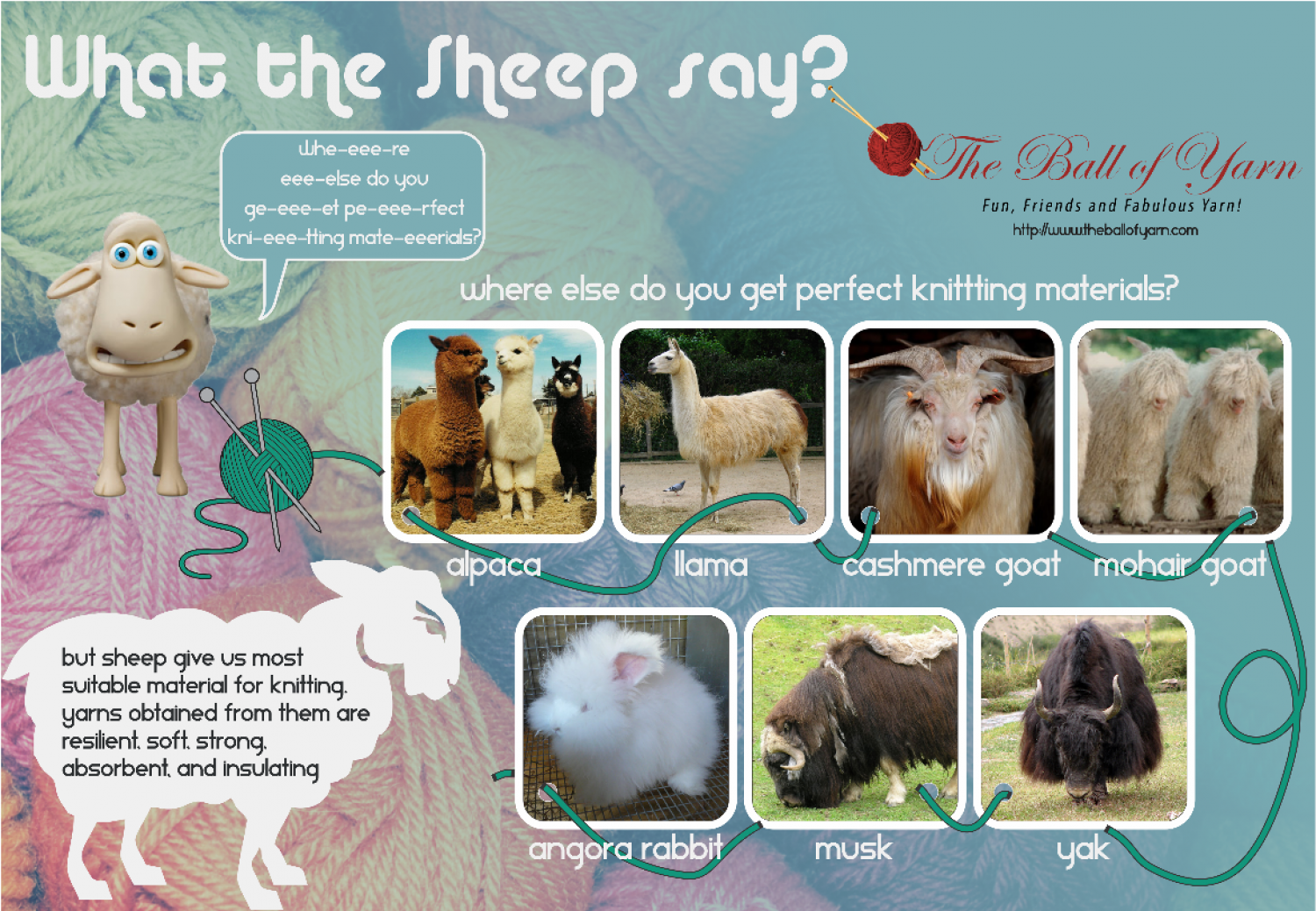 What The Sheep Say? Infographic