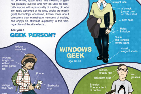 What Type of Software Geek Are You? Infographic
