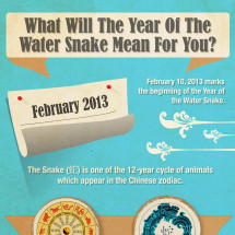 What Will The Year Of The Water Snake Mean For You? Infographic