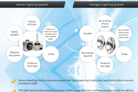 What will you choose? Xenon Bulbs or Halogen Bulbs. Infographic