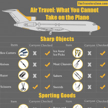 What You Cannot Take on the Plane Infographic