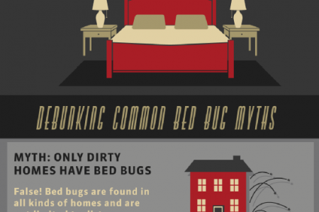 What You May Not Know about Bed Bugs Infographic