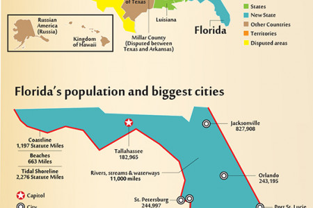 What you Need to Know about Moving to Florida Infographic