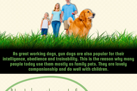 What You Should Know About Tour Gun Dog Infographic