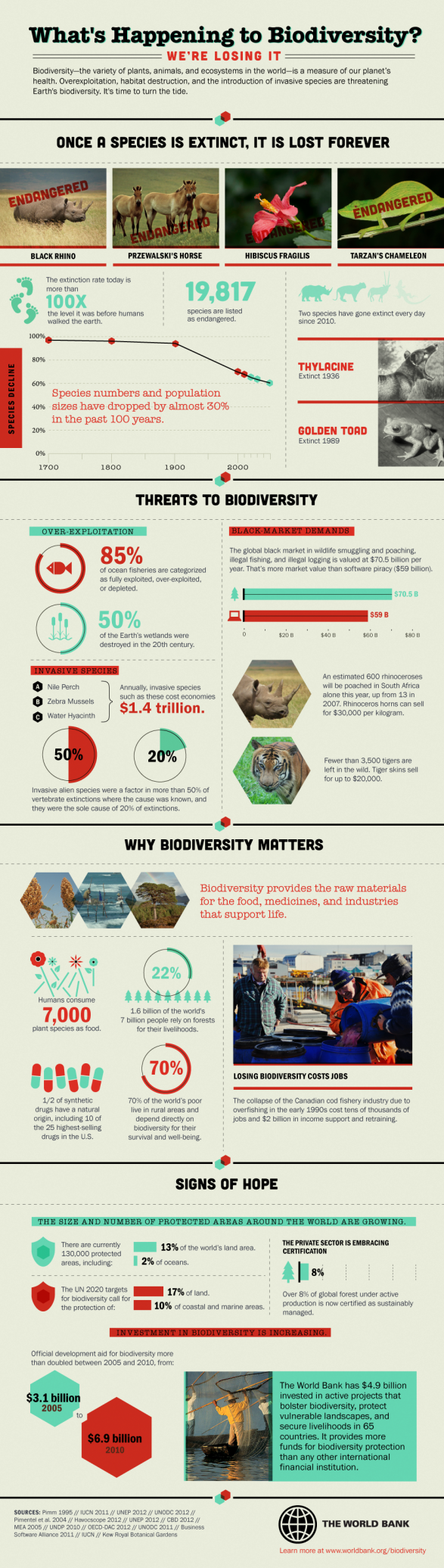 What�s Happening to Biodiversity?