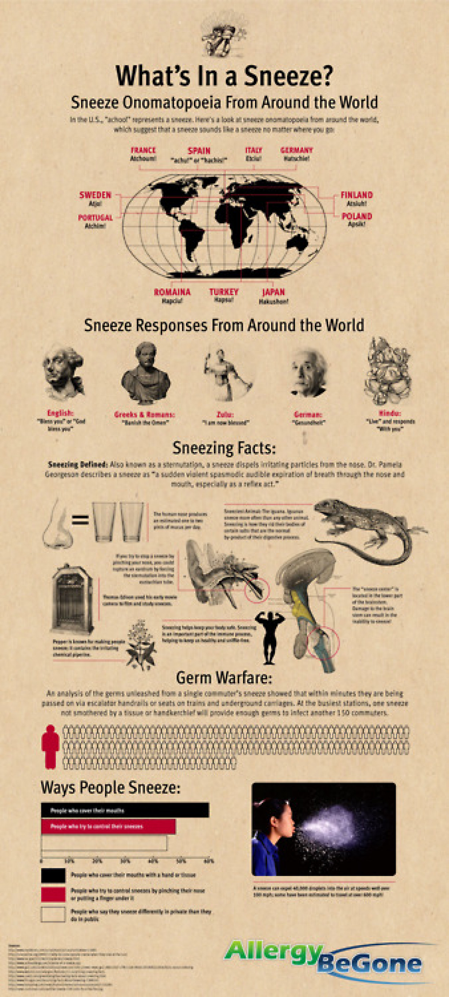 What's In a Sneeze? Infographic