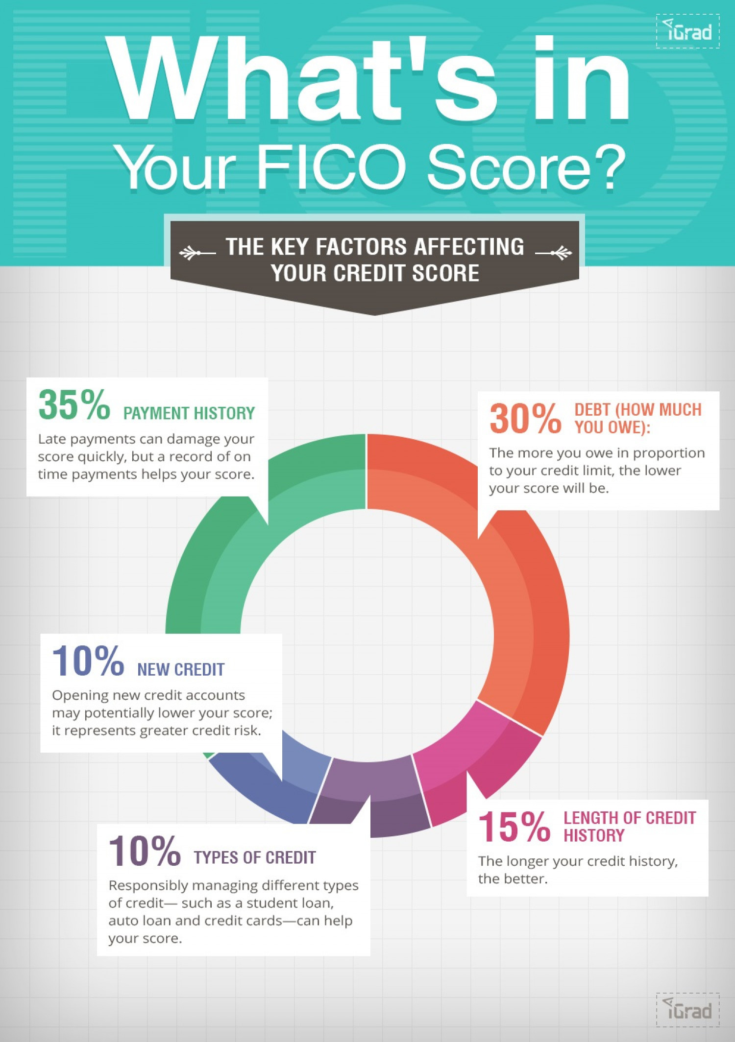 What's in Your Credit Score? Infographic