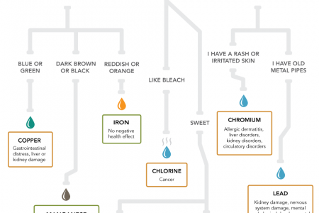 What's in your drinking water? Infographic
