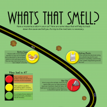 Whats that Smell Infographic