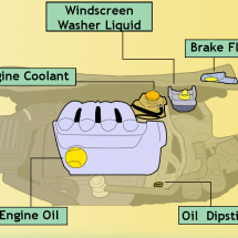 What's Under Your Bonnet? Infographic