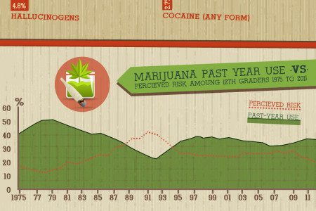 What's Wrong with Johnny?: An Infographic on Teen Drug Use Infographic
