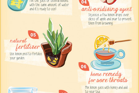 When Life Gives You Lemons, Go Beyond Lemonade Infographic