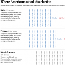 Where Americans Stood This Election Infographic