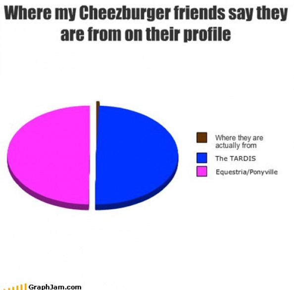 Where my Cheezburger friends say they are from on their profile Infographic