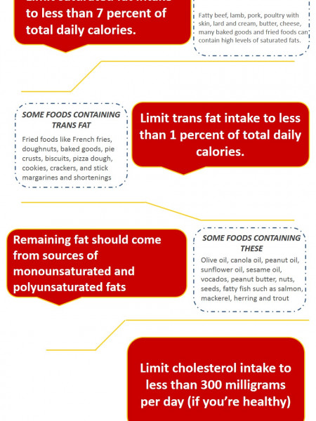 Which and How Much Fat You Should Eat Infographic
