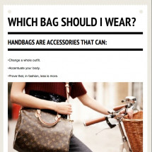 Which Bag Should I Wear? Infographic