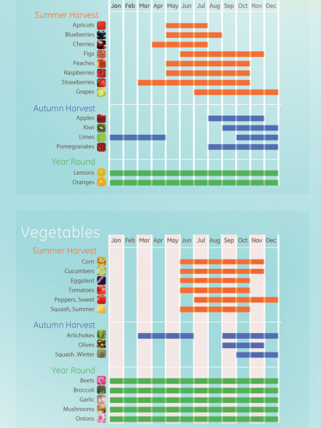 Which Produce is in Season? Infographic