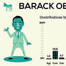 Which sector elects the next US president? Infographic