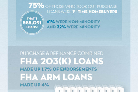 Who got an FHA Home Loan in 2011 Infographic