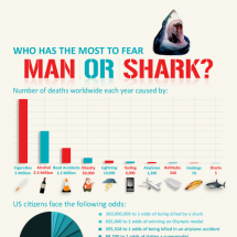 Who Has the Most to Fear- Man or Shark Infographic