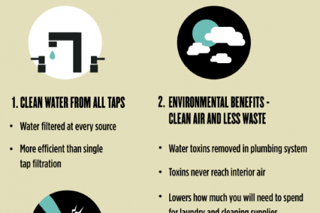 Whole House Water Filtration 101 Infographic