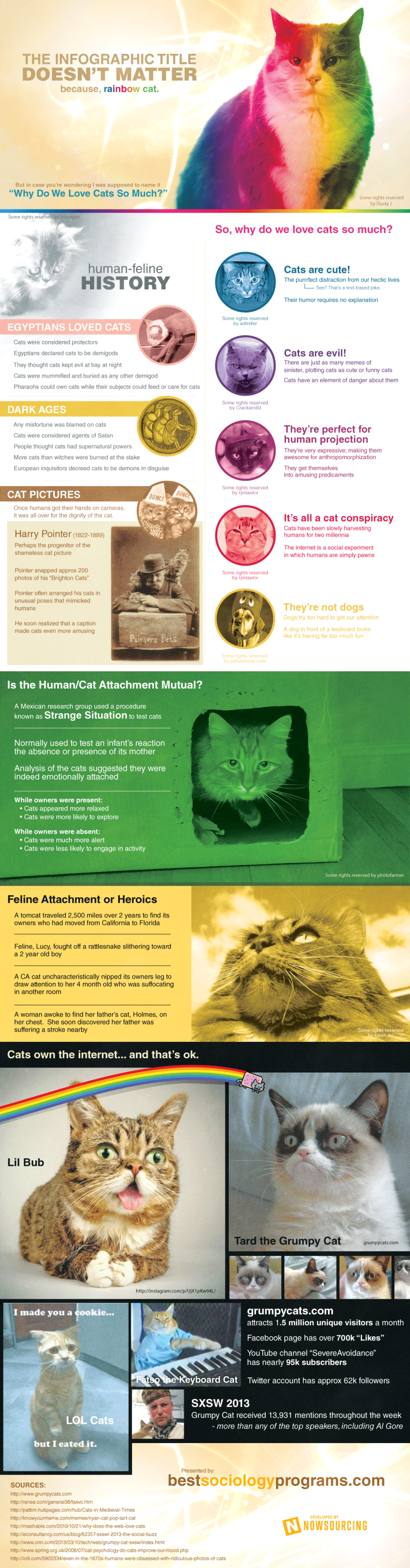 Why Do We Love Cats So Much? Infographic