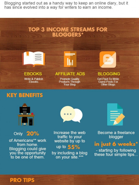 Why Every Freelance Writer MUST Have An Online Blog  Infographic