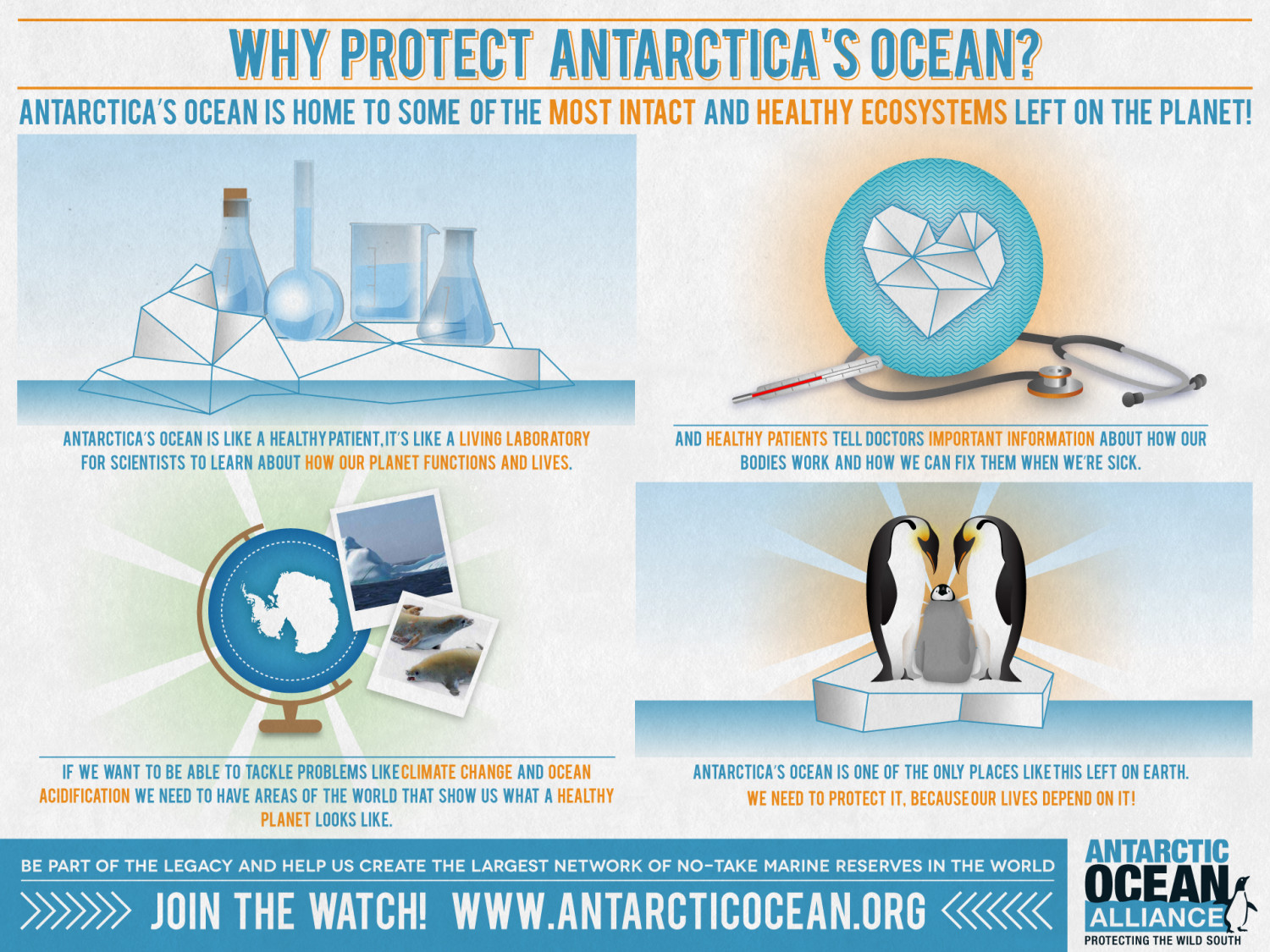 Why Protect Antarctica