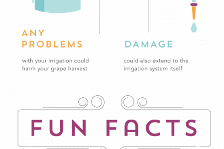 Why Should You Insure Your Vineyard?  Infographic