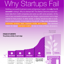 Why Startups Fail Infographic