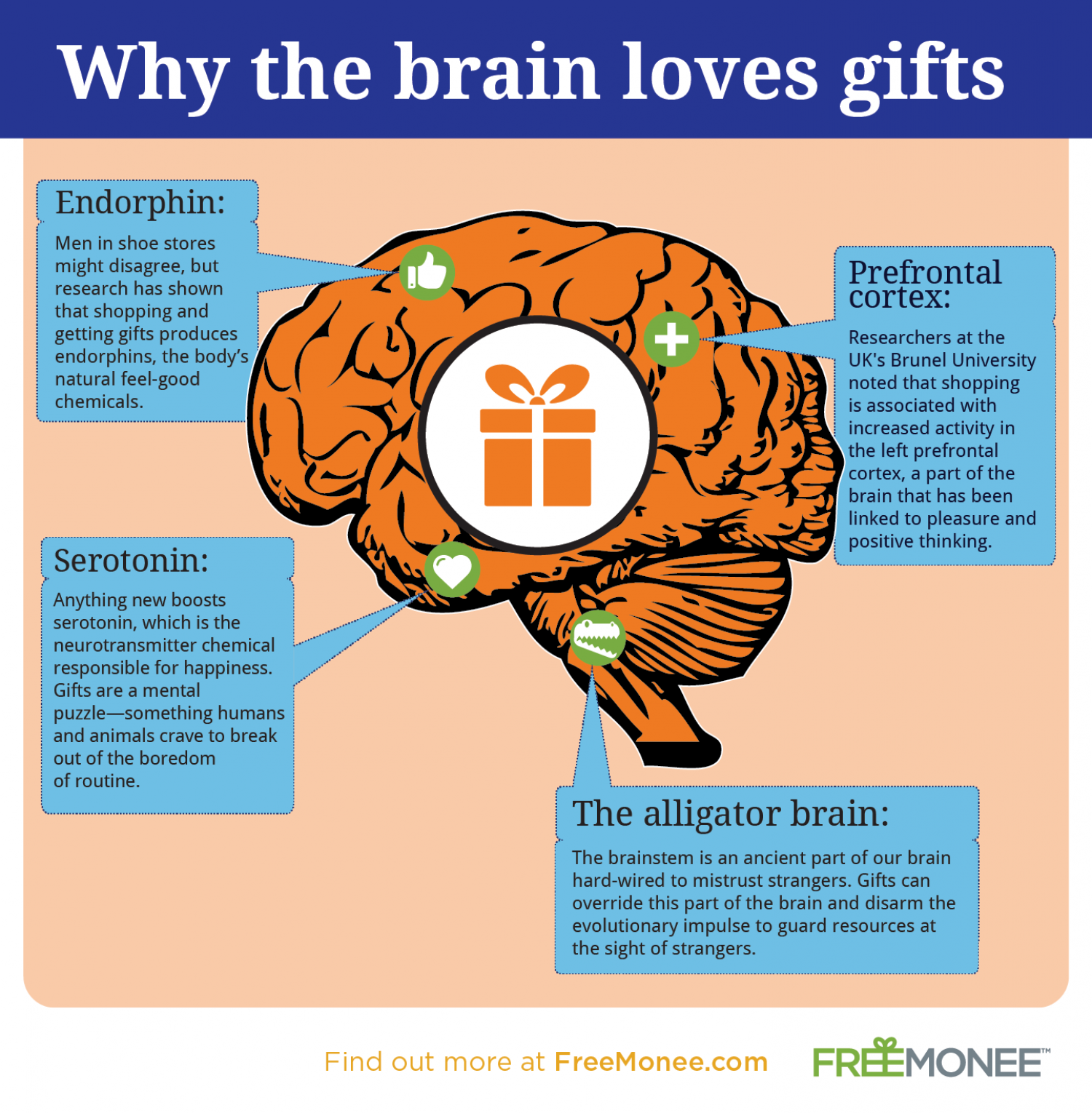 Why the Brain Loves Gifts Infographic