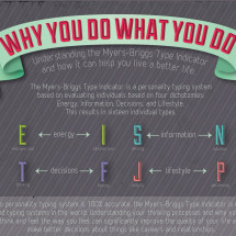 Why You Do What You Do Infographic