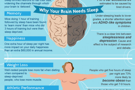 Why You Need Sleep Infographic