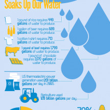 Why You Should Care About Water Conservation Infographic