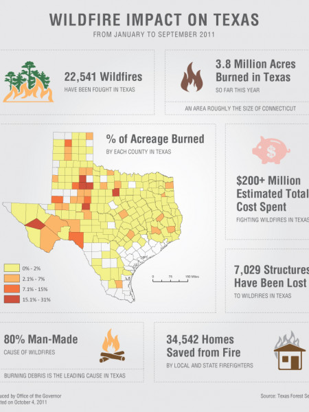 Wildfire Impact on Texas Infographic