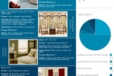 Window Shades Infographic Infographic