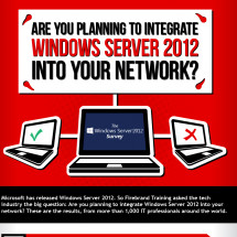 Windows Server Survey Infographic