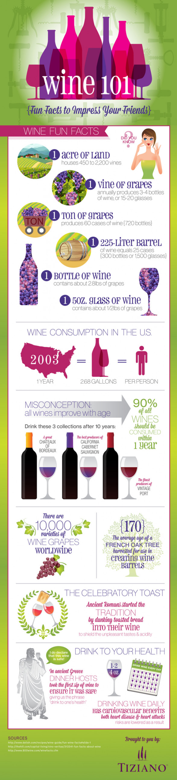 Wine 101: Fun Facts to Impress Your Friends