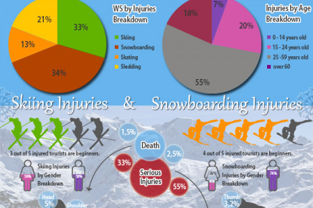 Winter Sports Injuries Statistics Infographic