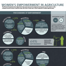 Women's Empowerment in Agriculture Index Infographic