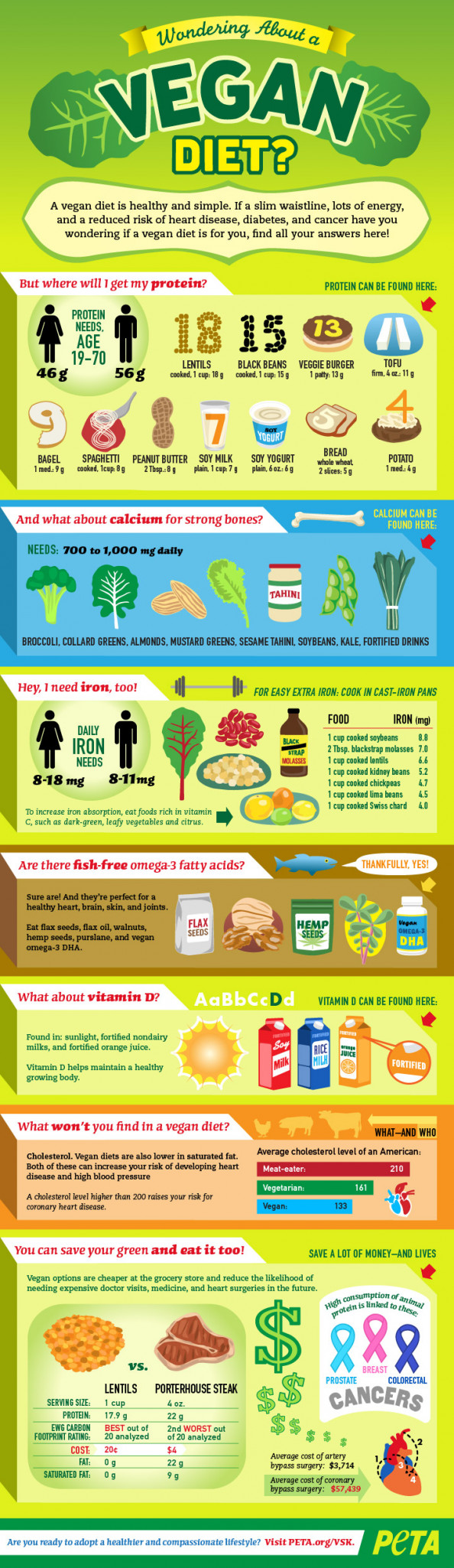 Wondering About a Vegan Diet? Infographic