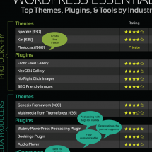 WordPress Essentials Infographic