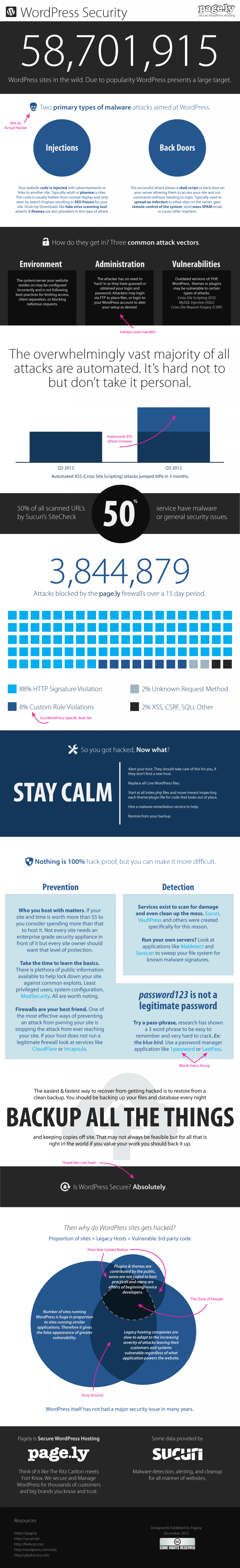 WordPress Security Infographic