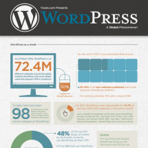 WordPress Stats Infographic Infographic