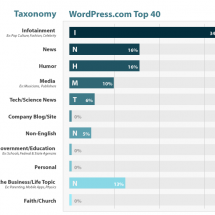 WordPress Top 40 Infographic